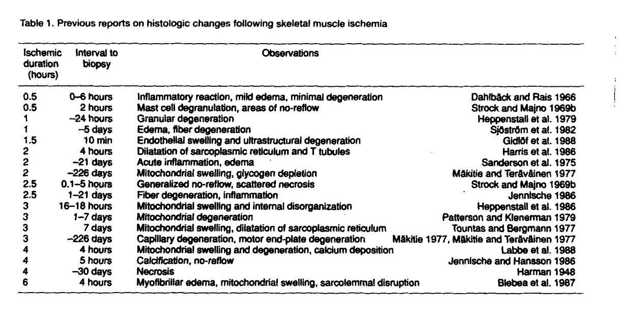 Tourniquet induced neuromuscular injury